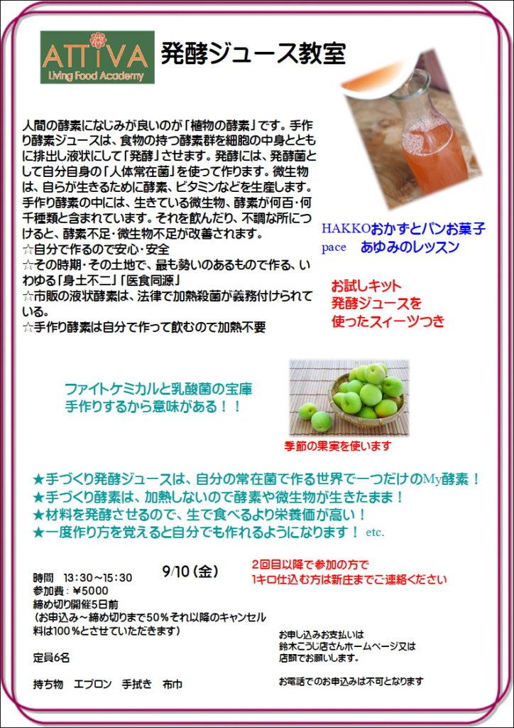 発酵ジュース (3)